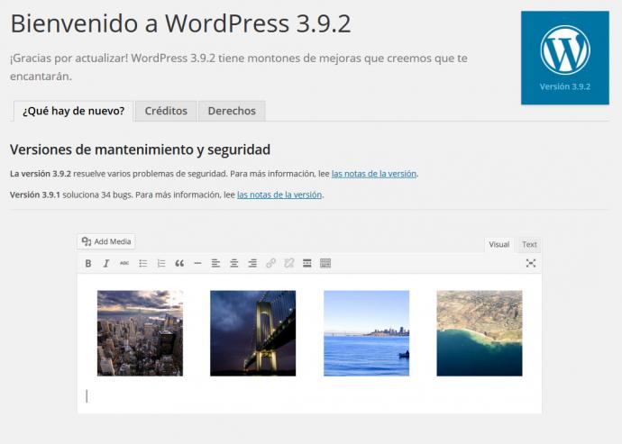Wordpress 8