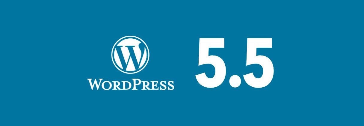 WordPress 5.5 ¿Qué debes saber sobre esta actualización?