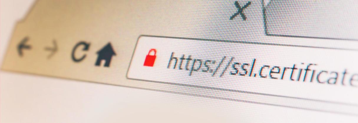 Ciberseguridad: Decálogo de recomendaciones de seguridad para tener un eCommerce saludable